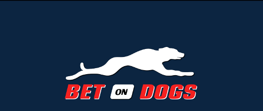Bet on Dogs