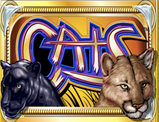 cats play for free casino